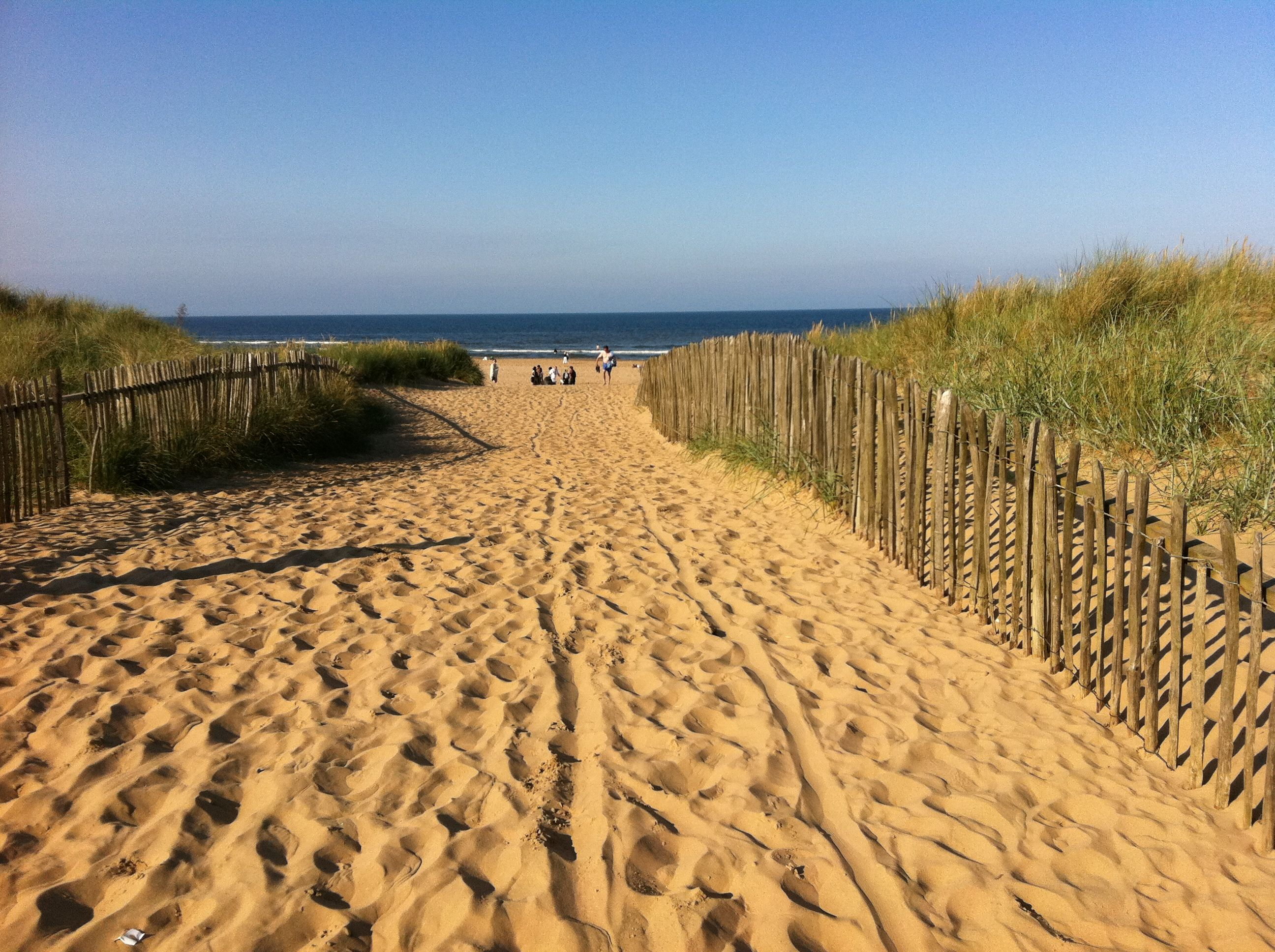 beach haven personals Find beach haven west nj beach haven west new jersey obituaries serve as a notice to the public and personals, beach haven west nj obituaries are taken.